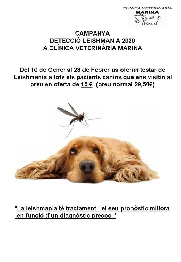 campanya leishmania