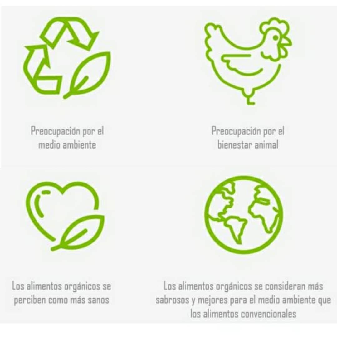 alimrentació ecológica